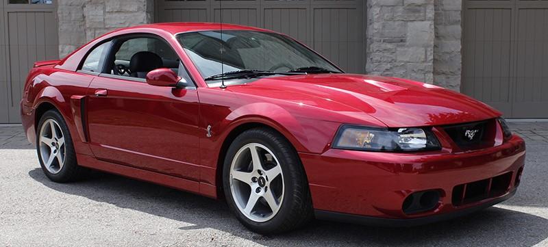 Ford Mustang Svt Cobra Terminator Okotoks Collector Car