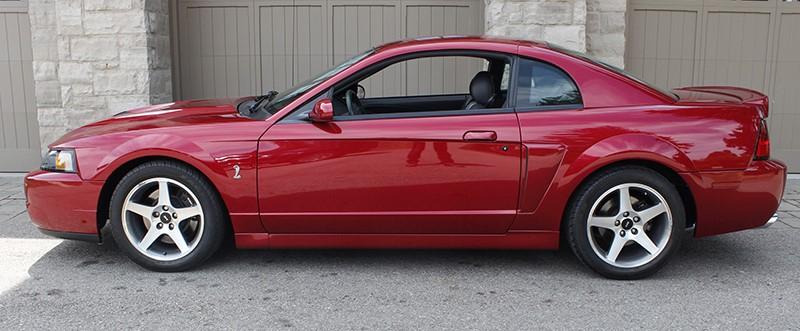 FORD MUSTANG SVT COBRA TERMINATOR – Okotoks Collector Car