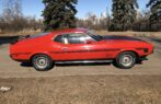 1972 Ford Mustang Fastback NO RESERVE