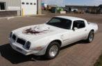 1976 Pontiac Trans Am Clone NO RESERVE