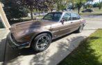 1984 Jaguar Vandenplas